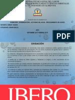 Oxidación – Isomerización - Actividad Del Agua - Procesamiento de Aceites