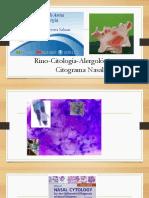 La Celula y La Mucosa Nasal Jhs