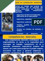 Competencias Laborales Leo