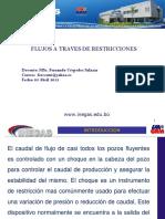 Estranguladores INEGAS.pptx.pptx