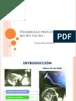 Tema 2 Desarrollo Prenatal y Del Recien Nacido