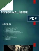 Trigeminal Nerve