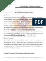 Guia práctica IE.pdf