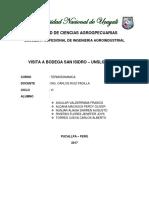 INFORME DE PISCO -UNICA.docx
