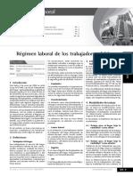 Regimen  trabajadores del hogar.pdf