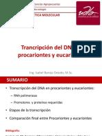 8. Transcripción Del DNA Procariontes y Eucariontes
