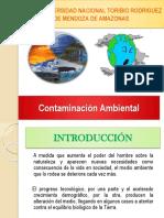 Clase 09 2017 Contaminación Ambiental