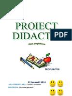 0_1_proiect_dp