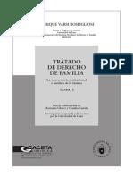 Tratado de Derecho de Familia - Tomo i - La Nueva Teoria Institucional y Jurídica de La Familia - Enrique Varsi
