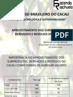 P7_3 cacau.pdf