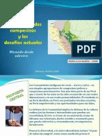 21203identidades Peru