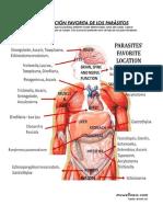 Mu Wellness · Pósters Localización (Plastificados)
