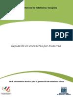 26- Captación en Encuestas por Muestreo, Generación de Estadística Básica.pdf