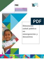 03 Lectura DimensionS.P.emergencias.desastres