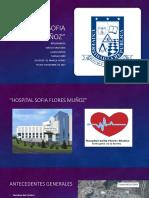 Hospital Sofia Flores Muñoz