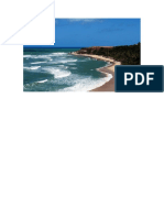praia do amor - pipa.docx