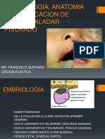 embriologiaanatomiayclasificaciondelabioy-150417194023-conversion-gate02.pdf