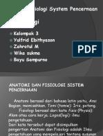 Anatomi Fisiologi System Pencernaan WIKA SUKMA