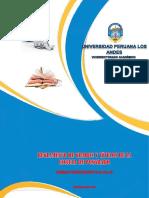 REG-GRADOS-POSG-SUNEDU.pdf