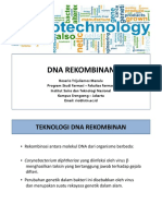 IV - Dna Rekombinan