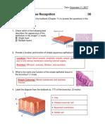 drew doiron tissues assignment