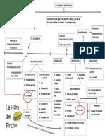 procedimiento-administrativo esquema