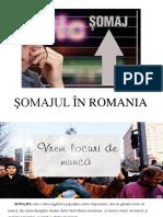 Şomajul În Romania