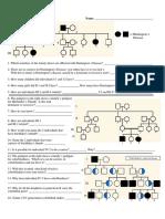 pedigree chart worksheet