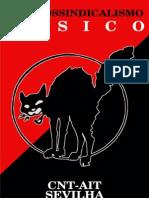 Anarcossindicalismo Básico/Tradução Sindivarios Piracicaba SP