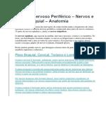 Sistema Nervoso Periférico- Esquema