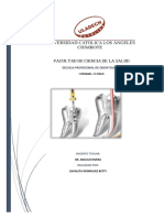 Técnicas Para La Preparación Biomecánica de Los Conductos Radiculares