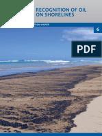 TIP6RecognitionofOilonShorelines.pdf