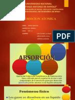 diapositivas-absorcion 2222222