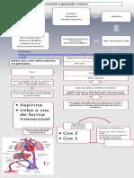 Infográfico Obstrícia apresentação