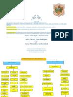 Actividades de Unidad III Irene Abigail Castañeda Galicia