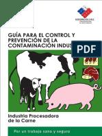 Control y Prevencion de Riesgos en Industria Procesadora de Carne