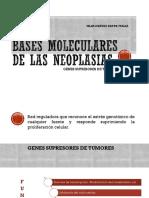 Bases moleculares de las neoplasias.pptx