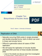 Campbell6e Lecture Ch10 Replication