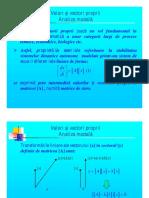 DSEE Prezentare Vectori Si Valori Proprii