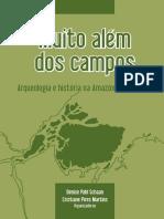 Livro - Arqueologia e historia na Amazônia Marajoara.pdf