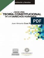 Hacia Una Teoria Constitucional de Los Derechos Humanos