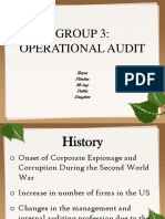 Operational Audit- Presentation