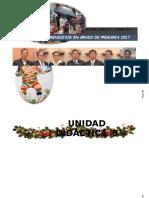 Unidad Didactica 8 5to Diciembre 2017 Imprimir