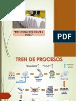 Industria Del Kraft y Papel