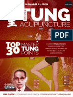 TOP 30 MASTER TUNG POINTS.pdf
