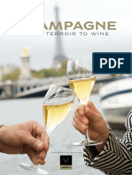 Champagne-From-Terroir-to-Wine.pdf