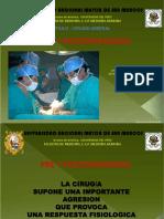 1. Preoperatorio - postoperatorio.pdf
