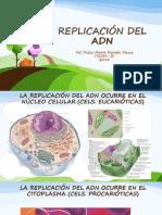 8 - DUPLICACIÓN DEL ADN 2014.pptx