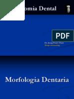 Anatomia Dental 5
