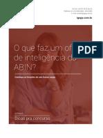 ebook-abin.pdf